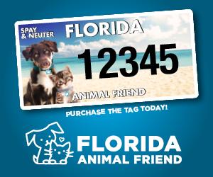 Florida Animal Friend License Plate