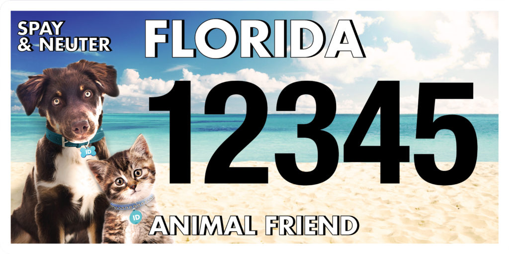 Florida Animal Friend License Plate Design