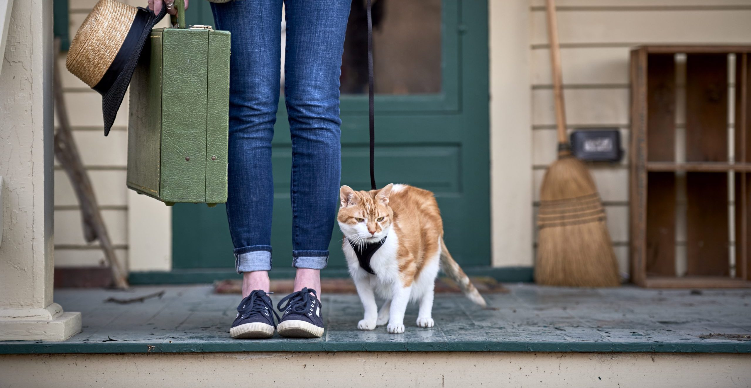 Girl with suitcase and cat