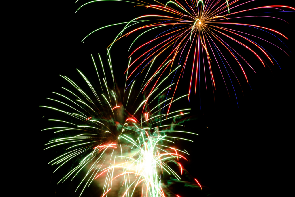 How to Help Your Pet During Fireworks Season
